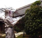 ハチ駆除作業写真2.png
